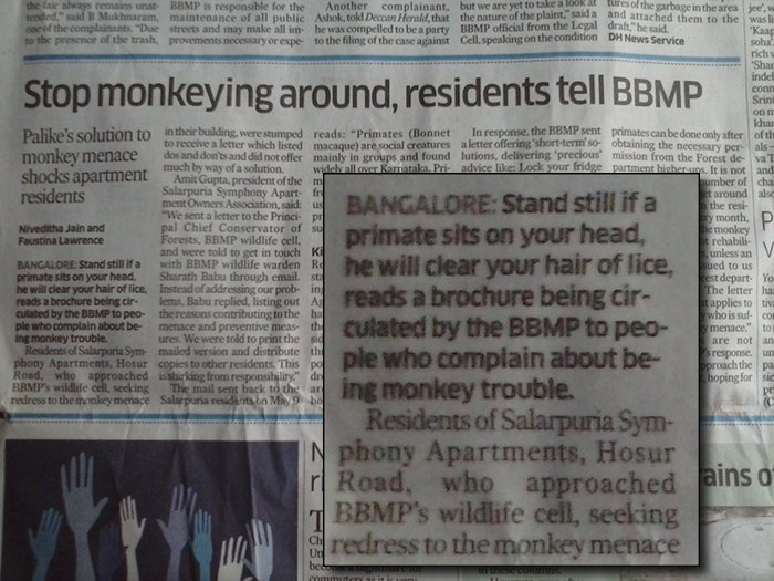 When people in a locality complained about monkeys, BBMP advised residents that monkeys can get rid of lice and let them do their work.