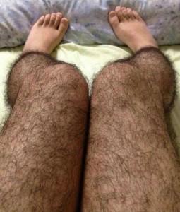 Man, those orangutan legs are scary.